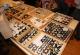 wonderful-insects_frankfurt09-14