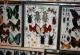 wonderful-insects_frankfurt09-30
