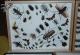 wonderful-insects_leipzig_2004-30